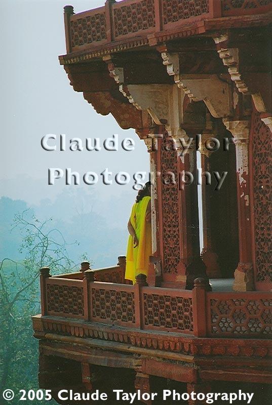 Yellow Sari