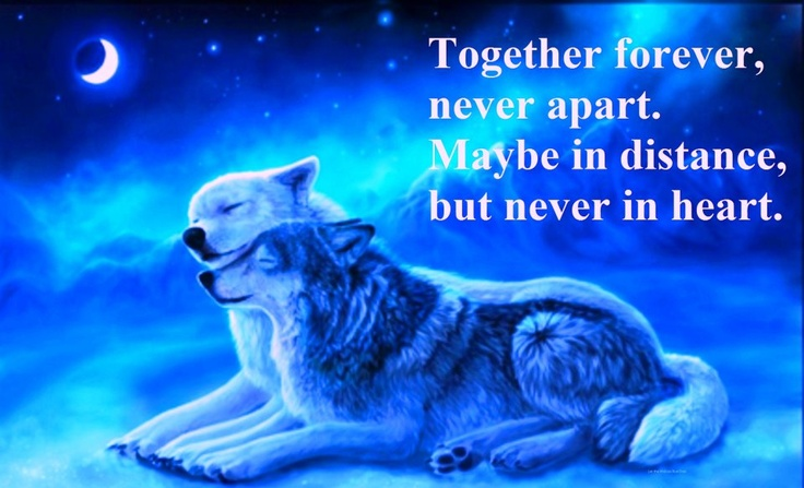 Together Forever Inspirational Quotes And Sayings