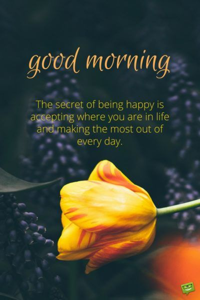 Fresh Inspirational Good Morning Quotes for the Day