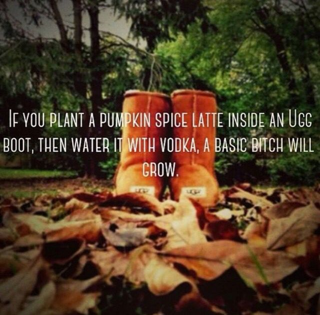 If you plant a Pumpkin Spice Latte in an UGG, then water it with vodka, a basic bitch will grow.
