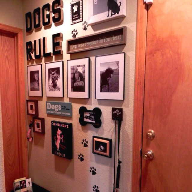 I so want to do this on the wall above the dog dishes.