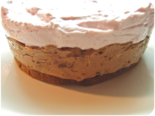 Mousse cake with two layers.