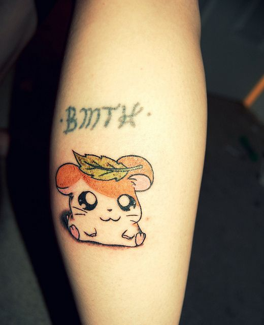 1000 images about hamtaro on pinterest hamsters bijoux and kawaii shop. Black Bedroom Furniture Sets. Home Design Ideas