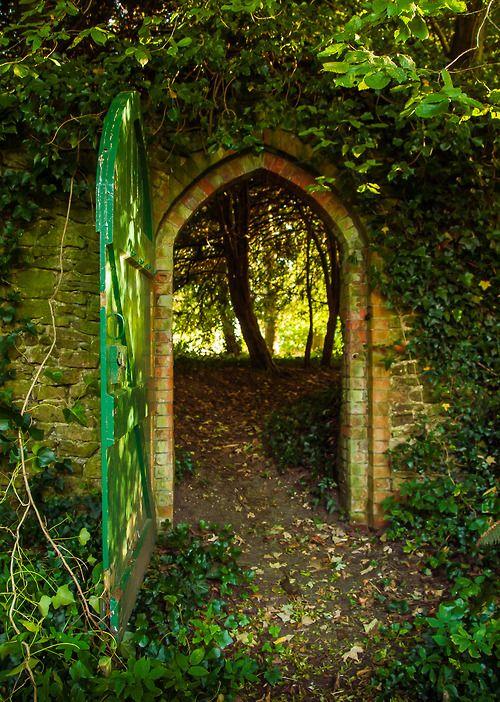 Nature, journey, mystery, wonder