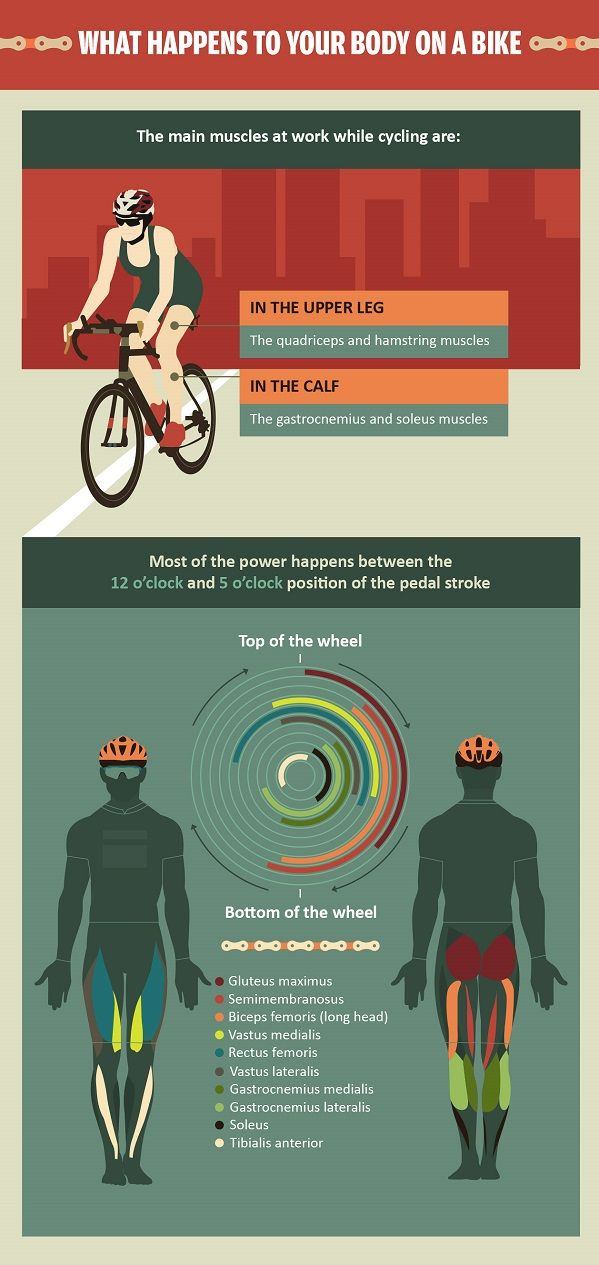 Infographic: The Benefits Of Cycling, What Happens To Your Body On A Bike - DesignTAXI.com