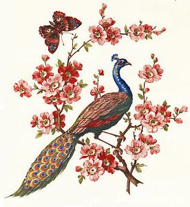 Ceramic Decals Oriental Style Peacock Bird Floral Butterfly | eBay