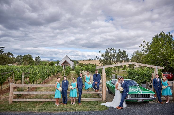 Winery wedding photos with bridal party  ~ Mike Semple Wedding Photography ~