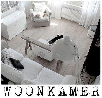 http://www.tierlantijn.net/images/kiek-WOONKAMER-001.jpg