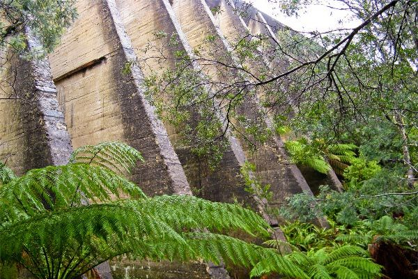 Mt Paris Dam, via Branxholm, North East Tasmania.  Article and photo by Carol Haberle for www.think-tasmania.com