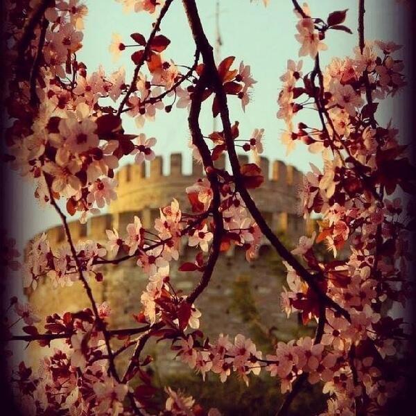 Hello #April!  Καλό μήνα #Thessaloniki #Greece