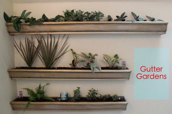 Gutter gardens on wall