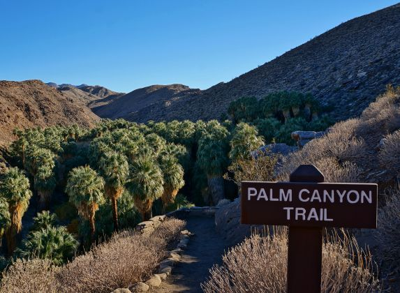 Hiking Palm Canyon Trail in Palm Springs California - http://www.loveyourrv.com/hiking-palm-canyon-trail-palm-springs-california/ #RVing #Hiking #SiteSeeing