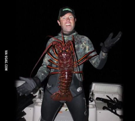 Man Catches 12-Pound, 70-Year Old Lobster In California