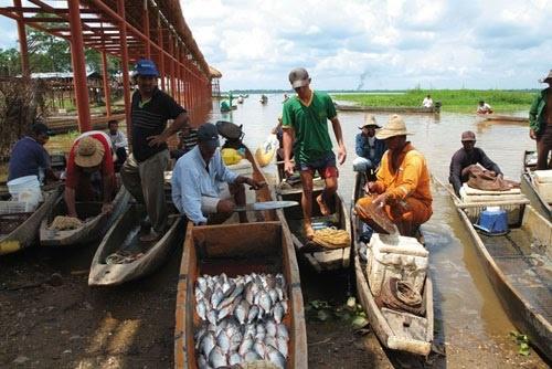 Colombia - Pescadores del Llanito, Barrancabermeja Santander