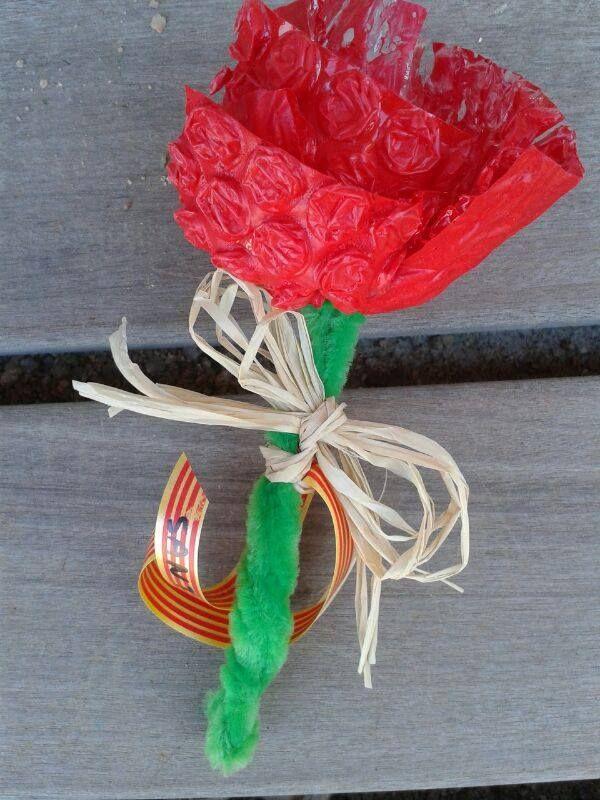 rosa de Sant Jordi amb plàstic de bombolles