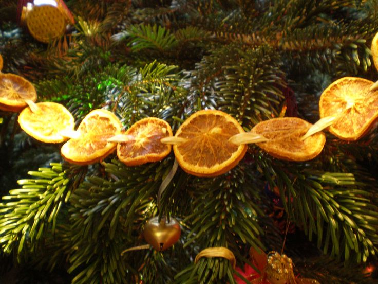 Idea for a natural Christmas garland - thread some dried orange slices together with raffia, from driedflowercraft.co.uk