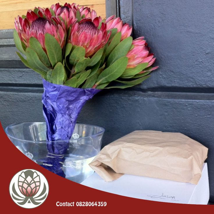 Smile! Not because it's Friday, but because it's World Smile Day! Put a smile on a special someone's face today by treating them to a beautiful bouquet of proteas! Wishing you all a happy Friday from Bofberg Flowers. #worldsmileday #flowers #bofbergflowers