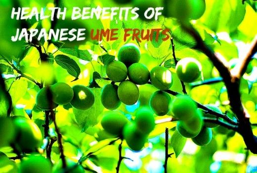 "Health Benefits Of Ume (Japanese Plum). ""An ume a day keeps 100 illnesses away""! Umeboshi and mumefural, two by-products from the ume fruit."