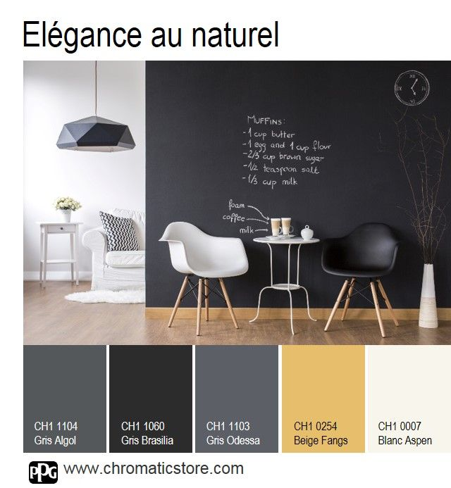 quelle couleur associer avec un mur en pierre comment associer la couleur gris en d coration. Black Bedroom Furniture Sets. Home Design Ideas