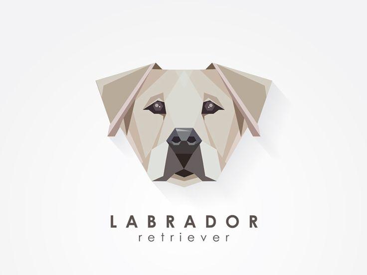 Labrador Retriever by Diana Hlevnjak