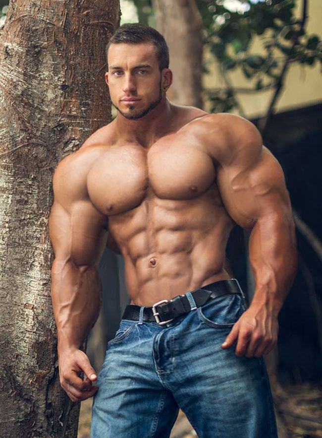 Male muscle hunks