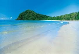Image result for cape tribulation