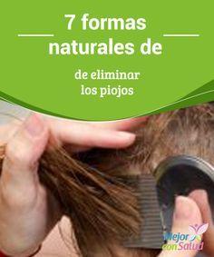 7 formas naturales de eliminar los piojos  Los piojos  que se producen en la cabeza humana (Pediculus humanus capitis) son un insecto diminuto que no superan los 3 milímetros y que se agarran del cuero cabelludo para succionar la sangre.