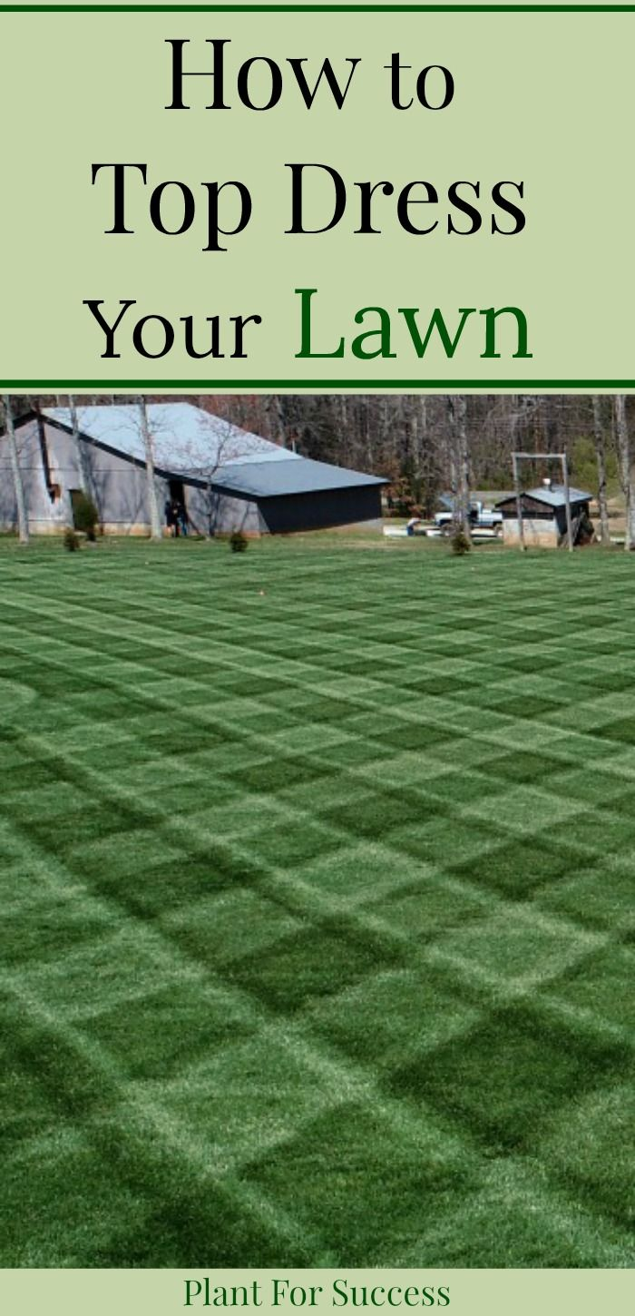 Top Dressing Lawn Benefits And Advice In 2020 Spring Lawn Care