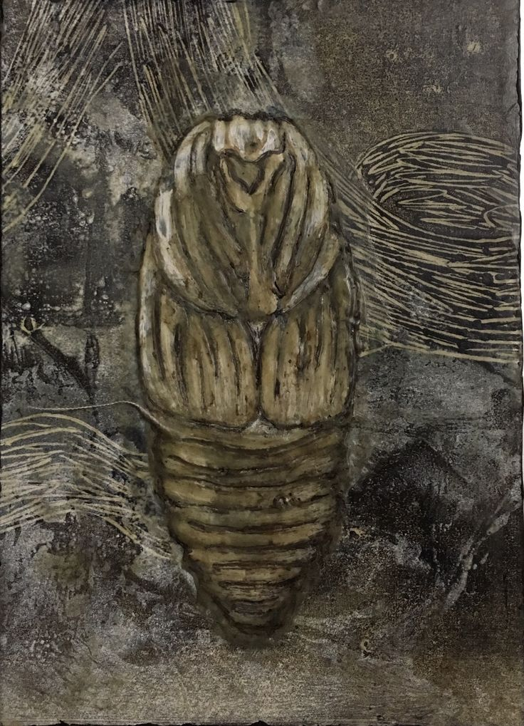 Tracie Noles-Ross - CECROPIA COCOON   monotype and encaustic on board   5×7 inches