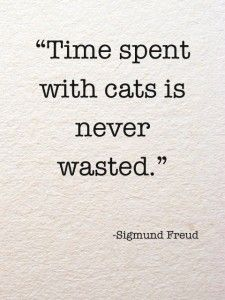 Especially with my little Baby Kitty. She is the sweetest creature on this stupid planet and all she ever wants from me is cuddles and loves.
