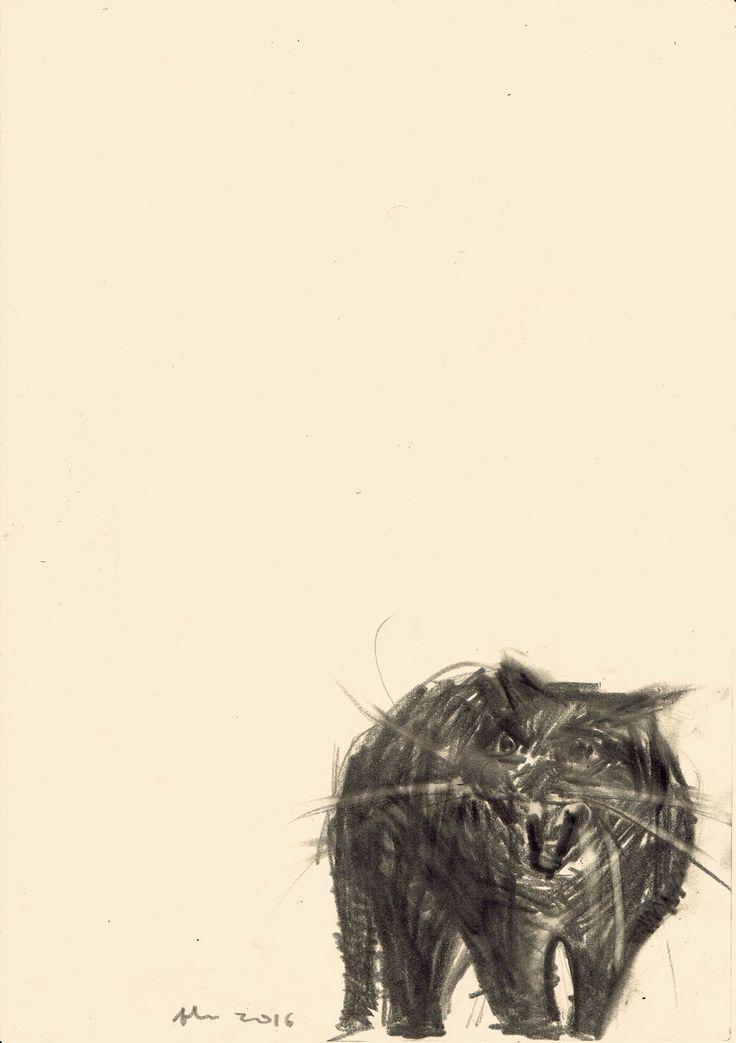 Expressions des passions de l'âme (IIb) Que fazes por aqui, ó gato?
