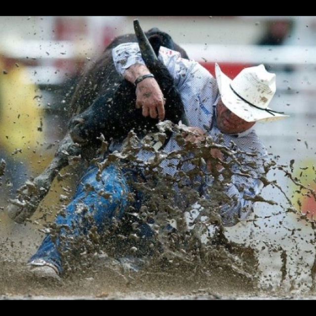 Matt Reeves PRCA Steer Wrestler. Getting it done in the mud!Reeves Prca, Steering Wrestlers, Country Style, Matte Reeves, Prca Steering, Insulin Pump, Country Life, Cowboy Style, Country Boyz