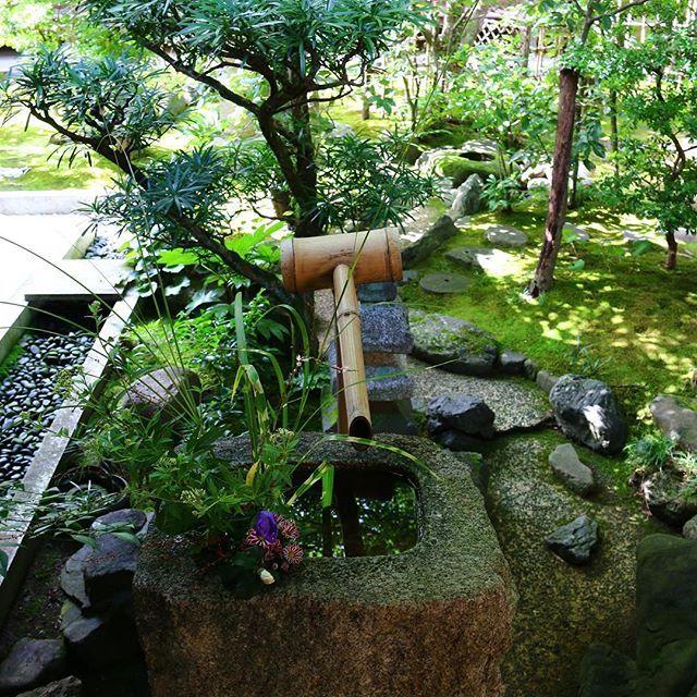 Wishing you all a peaceful day 💦 // Mindenkinek békés napot kívánok 💦 #szegedbudokan #martialarts #academy #szeged #harcművészet #seibukan #jujutsu #seibukanjujutsu #shinto #shrine #blessing #void #elements #nature #water #lovewhatyoudo #mylife #japan #japanese #garden #harmony #inspiration #quote #kinkakuji #kyoto #temple