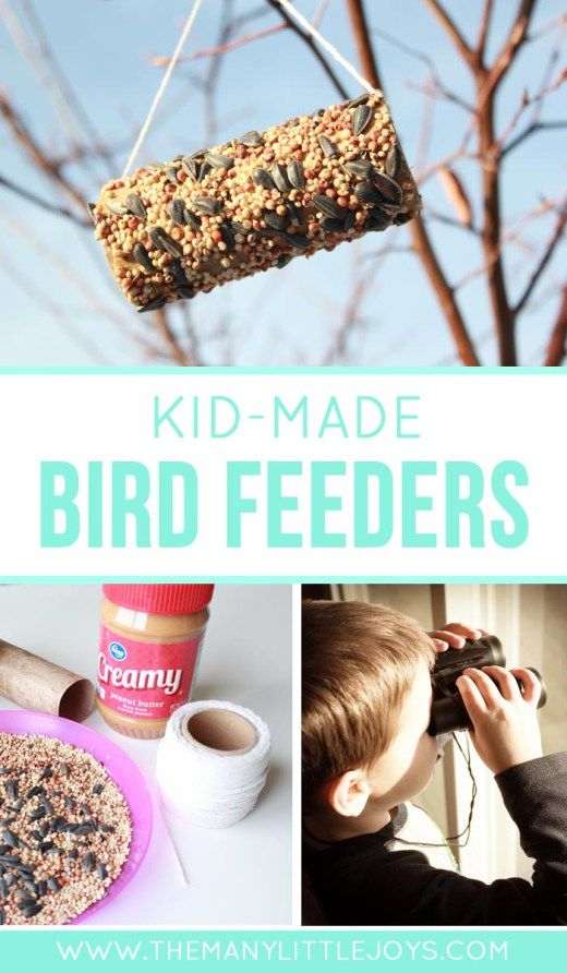 These easy DIY bird feeders for kids are a great trash-to-treasure craft for kids who want to help out their feathered friends.