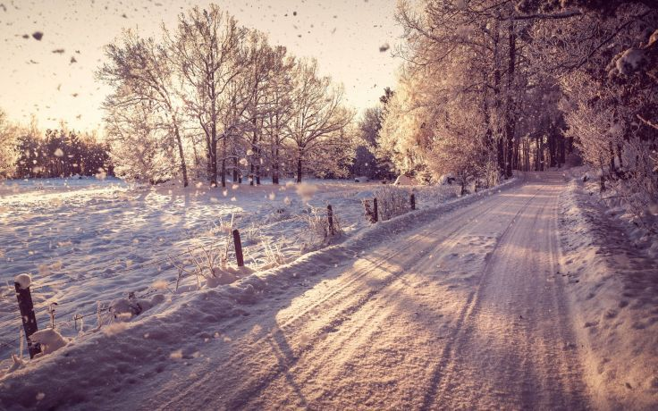 nature world roads street trail landscapes fence fields sunlight trees forest travel tunnel winter snow seasons snowing flakes drops sunrise sunset white wallpaper background