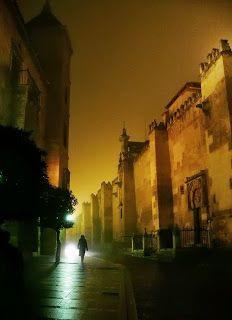 fotocórdoba: En la oscuridad #mezquita #juderia #nocturna #Cordoba #CordobaESP