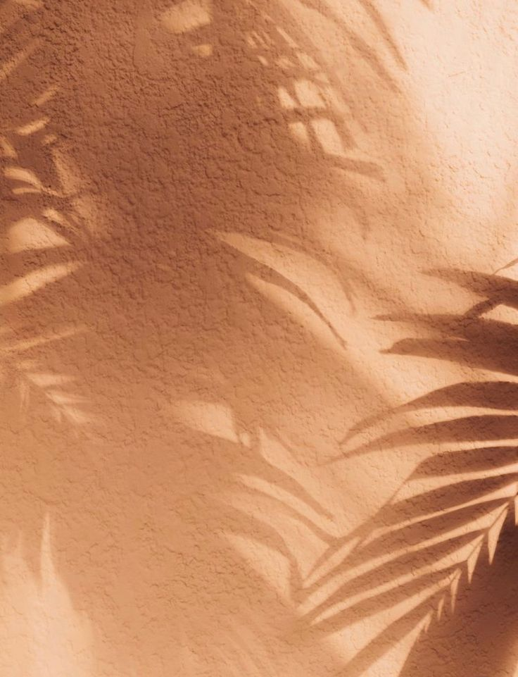 Tan Premium Leather Espadrilles With Silver Detail Atelier Alienor Peach Aesthetic Brown Aesthetic Beige Aesthetic