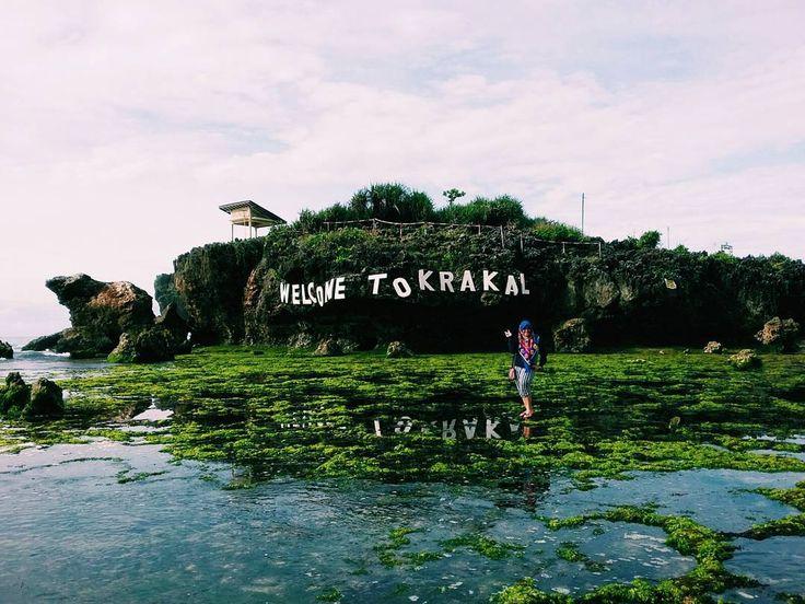 Adanya banyak ikan hias yang berada di karang - karang dekat pantai pada musim - musim tertentu menjadikan sebuah tontonan yang layak disaksikan. Bercanda sambil berenang menambah suasana menjadi lebih asik. Pantai yang bersih dan fasilitas yang memadai dapat Dolaners nikmati di Pantai Krakal, Yogyakarta.[Photo by jalurmudik.com/]