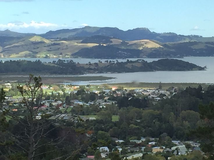 View from the top! Coramandel, New Zealand