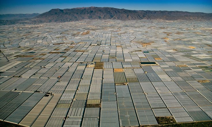 Greenhouses grow greenhouses As far as the eye can see, greenhouses cover the landscape in Almeria, Spain Photograph: Yann Arthus Bertrand