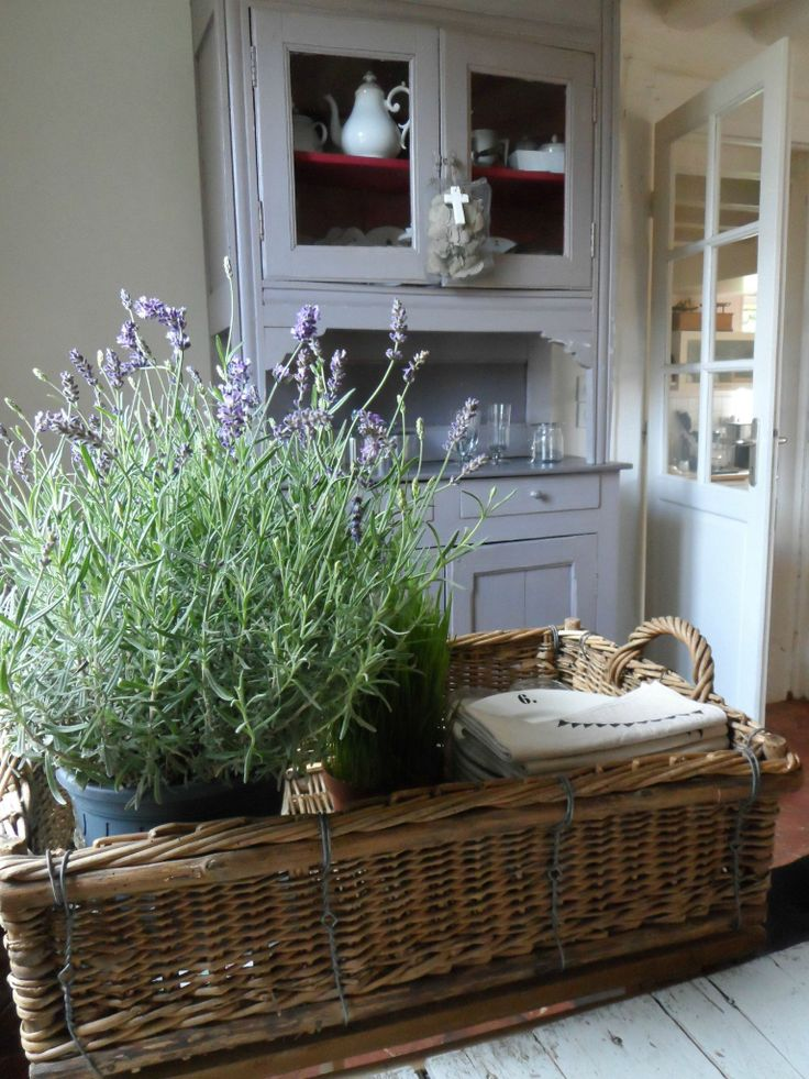 Lovely basket with lavender
