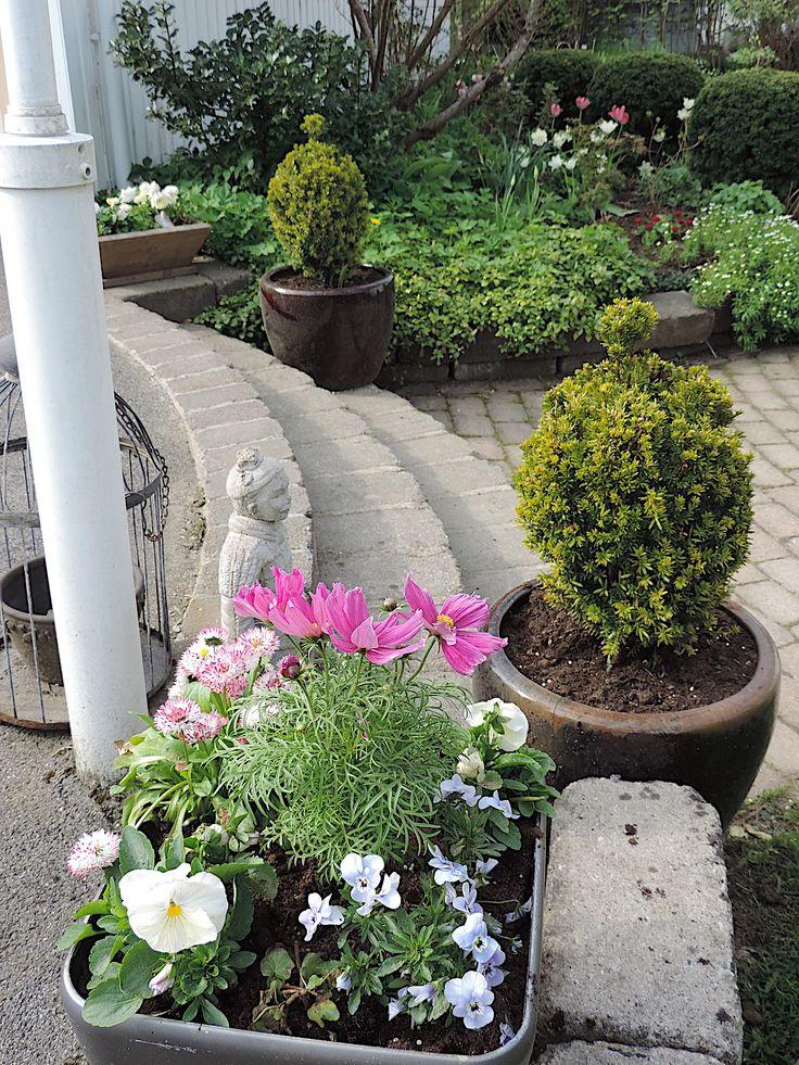 Luna Eks trädgårdsblogg - trädgård, trädgårdsdesign, feng shui