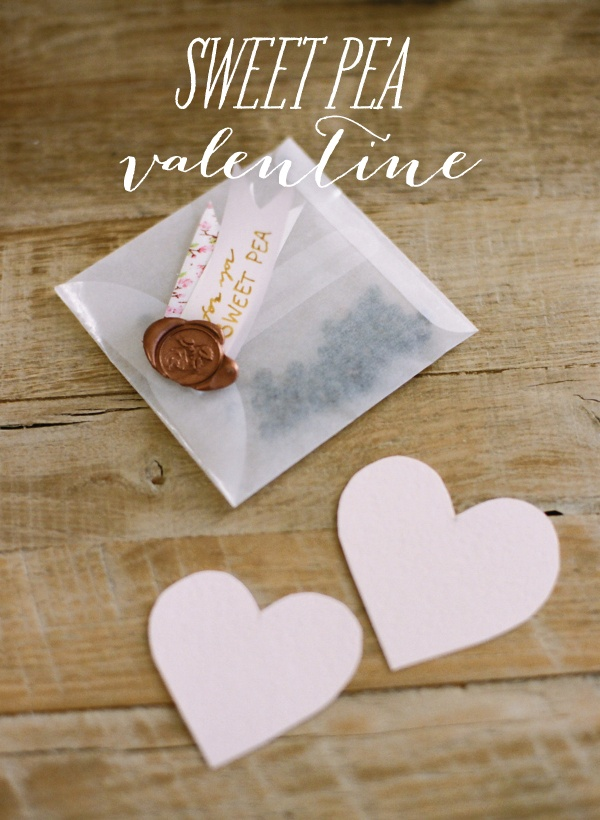 Simple, sweet, utterly lovely DIY Valentines.     http://www.stylemepretty.com/2013/02/03/smp-at-home-sweet-pea-valentines/    Photo By: Heidi at http://whiteloftstudio.com