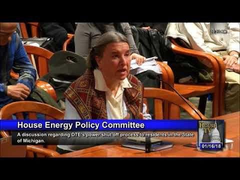Georgetta Livingstone, Ph.D. DTE Shut-off Testimony 1/16/2018