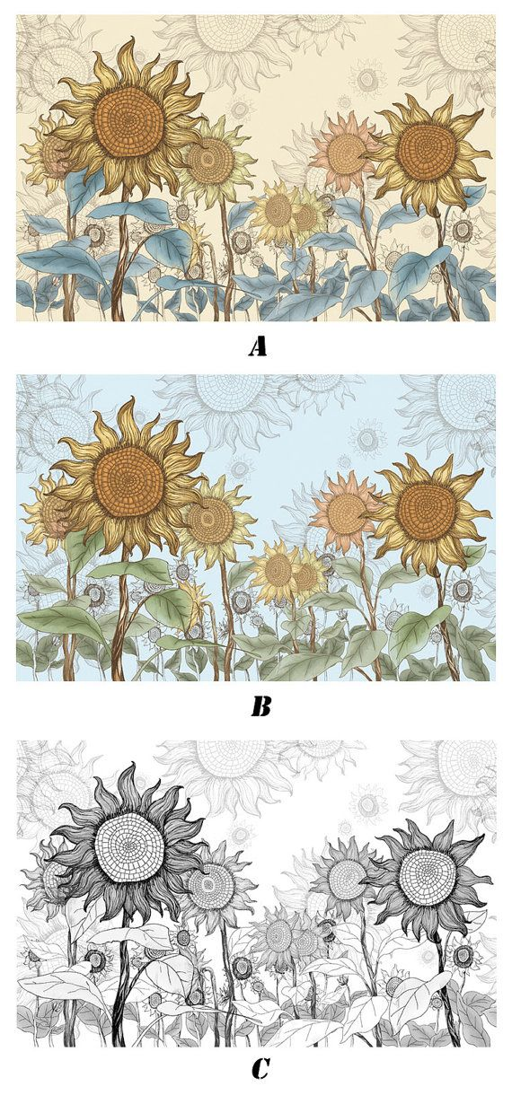 1000 ideas about sunflower wallpaper on pinterest daisy for Daisy fuentes wall mural