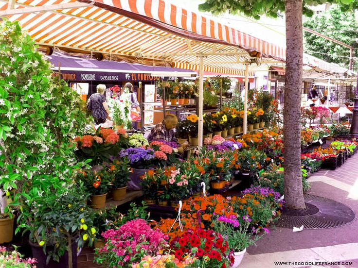 Cours Saleya Market, Nice, in Photos : The Good Life France ~ click thru for more photos and article!