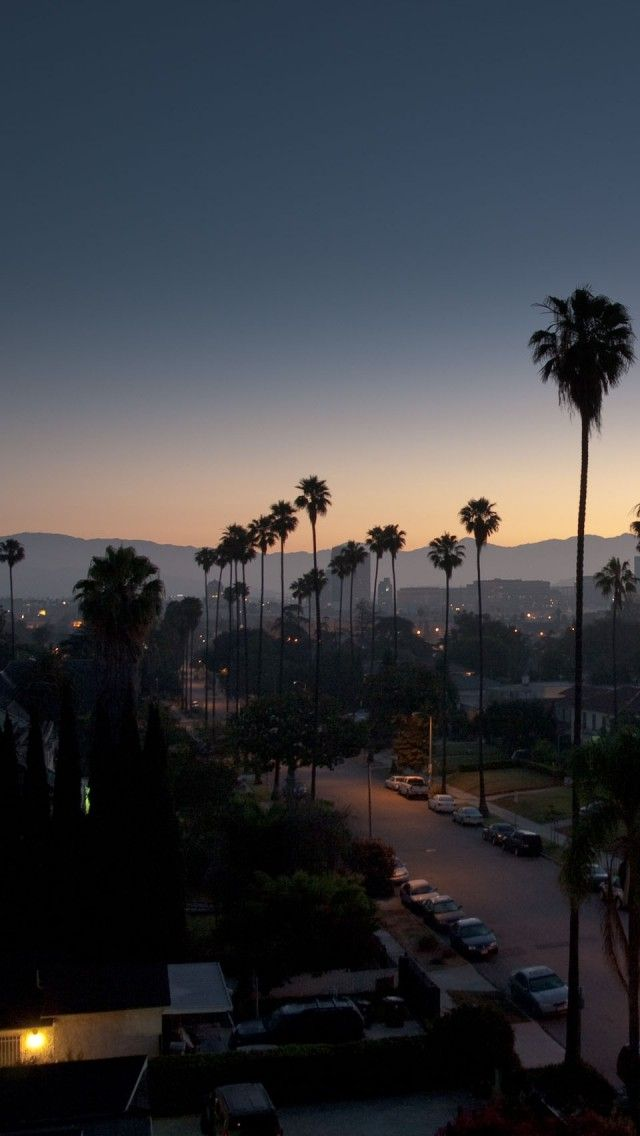 los angeles evening iphone 5 wallpapers backgrounds 640