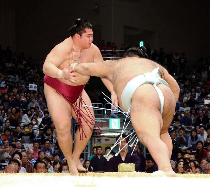 高安が遠藤に完勝、大関目指し快勝発進 #相撲