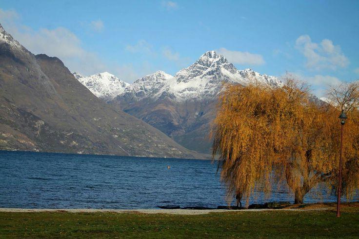 Queenstown lake #lake #queenstown #water #photography #tree #orange #blue #green #mountain #snow #grass #queenstown #nz #newzealand #pretty #beautiful #nature #landscape #willow