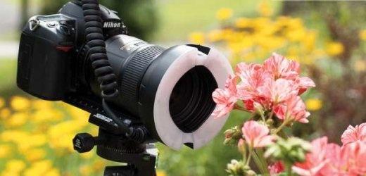 Makrofotografie: Wichtiges Zubehör sind Makroschlitten und Ringblitz